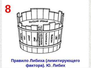 8 Правило Либиха (лимитирующего фактора). Ю. Либих