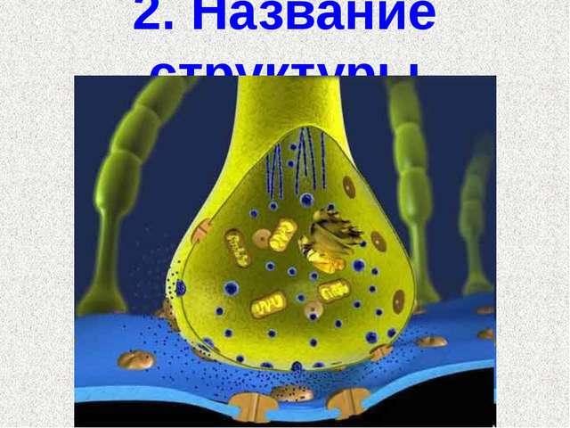 2. Название структуры