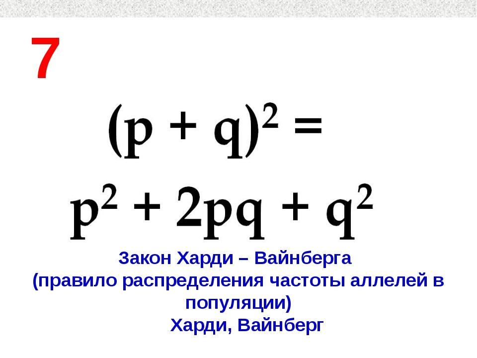 7 Закон Харди – Вайнберга (правило распределения частоты аллелей в популяции)...