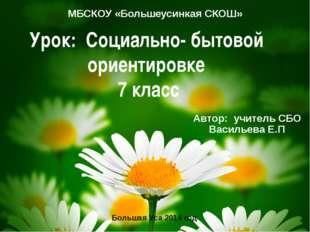 Урок: Социально- бытовой ориентировке 7 класс МБСКОУ «Большеусинкая СКОШ» Авт