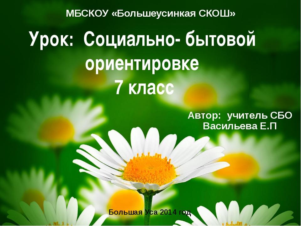 Урок: Социально- бытовой ориентировке 7 класс МБСКОУ «Большеусинкая СКОШ» Авт...
