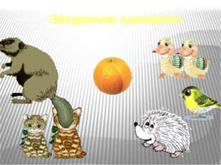 Мы делили апельсин. Много нас, а он один. Эта долька – для ежа. Эта долька –