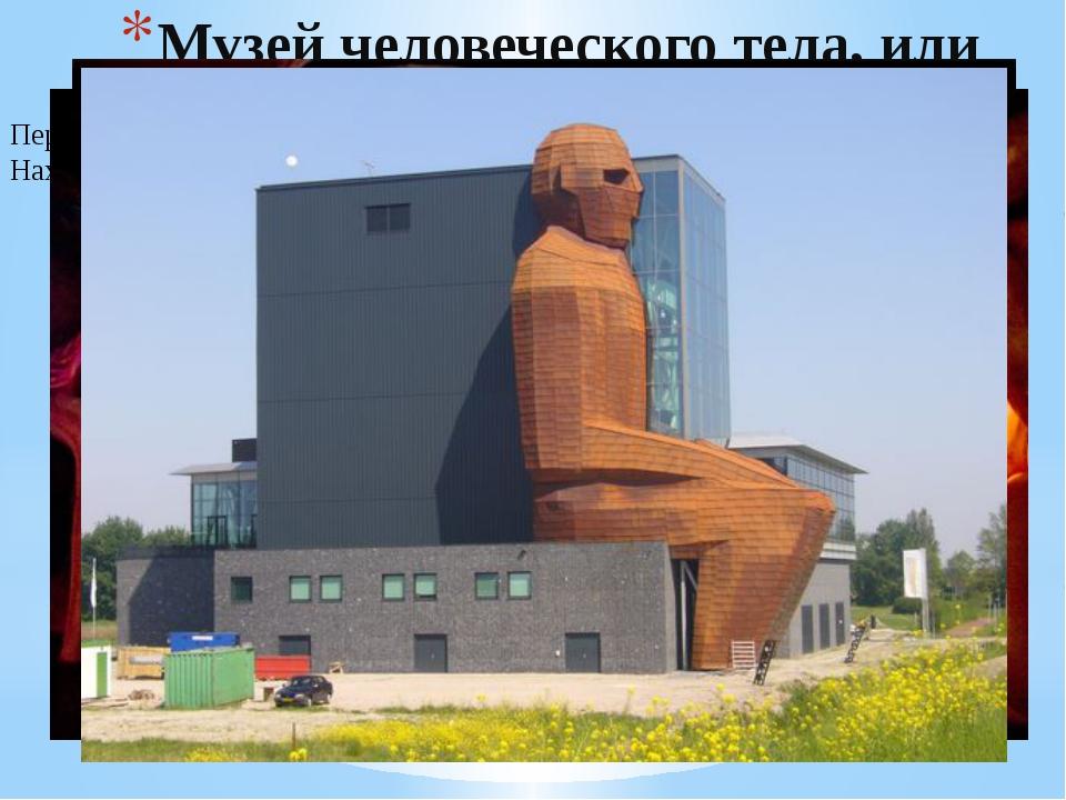 Музей человеческого тела, или анатомии человека Передвигаясь по этажам можно...