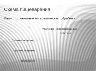 Схема пищеварения Пища механическая и химическая обработка удаление неперевар