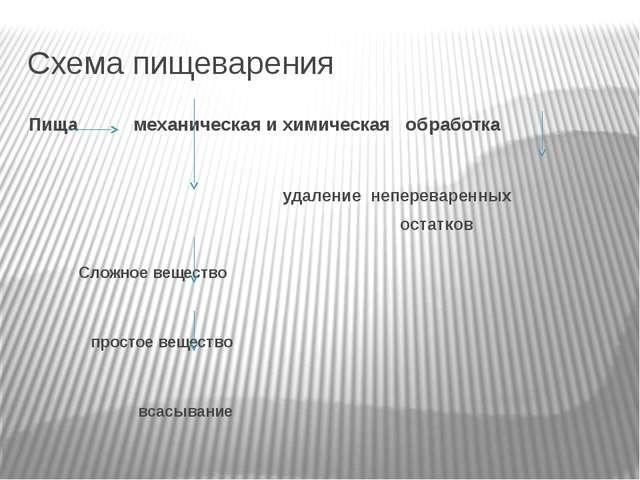 Схема пищеварения Пища механическая и химическая обработка удаление неперевар...