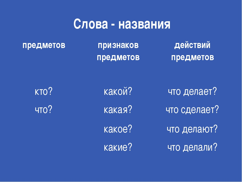 Слова - названия предметов признаков предметов действий предметов кто? какой?...