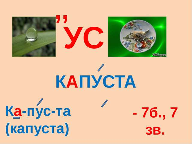УС ,, КАПУСТА Ка-пус-та (капуста) - 7б., 7 зв.