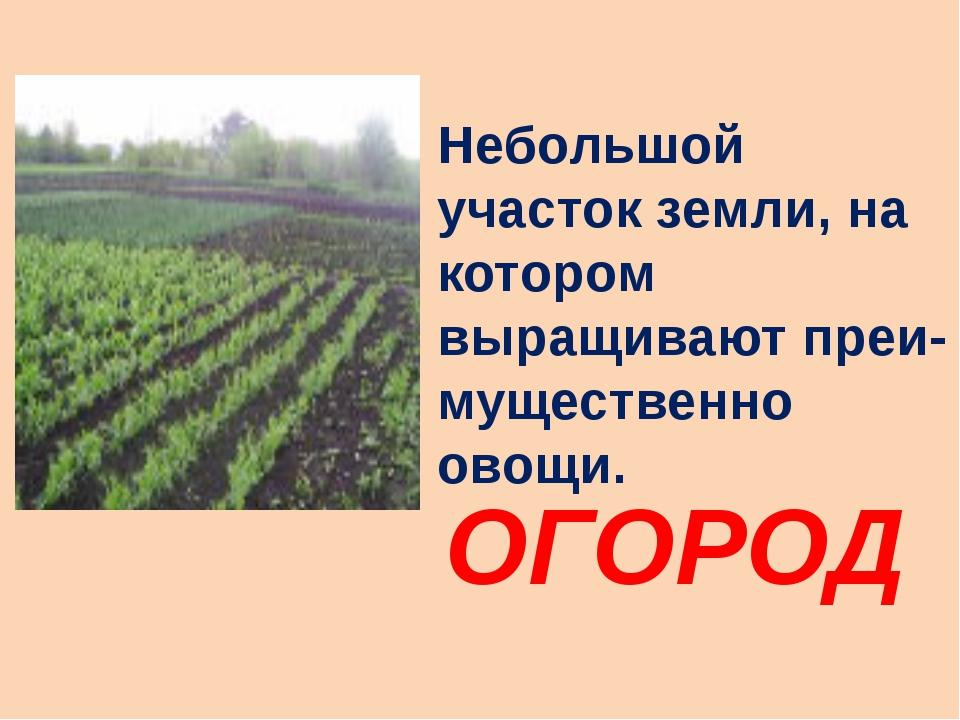 Небольшой участок земли, на котором выращивают преи- мущественно овощи. ОГОРОД