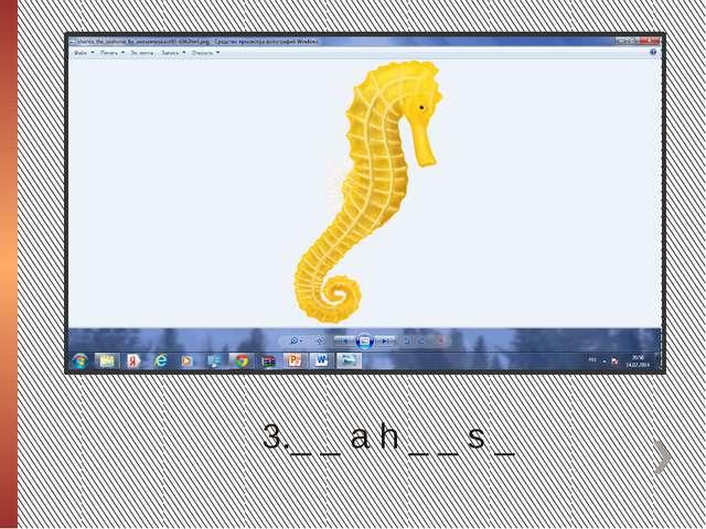 3._ _ a h _ _ s _