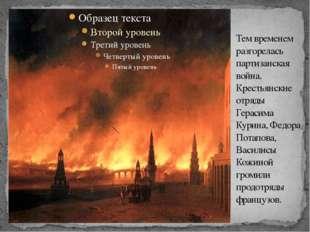 Тем временем разгорелась партизанская война. Крестьянские отряды Герасима Кур