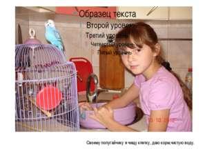 Своему попугайчику я чищу клетку, даю корм,чистую воду.