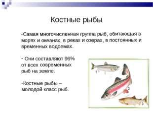 Костные рыбы Самая многочисленная группа рыб, обитающая в морях и океанах, в