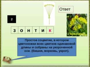 2 Простое соцветие, в котором цветоножки всех цветков одинаковой длины и собр