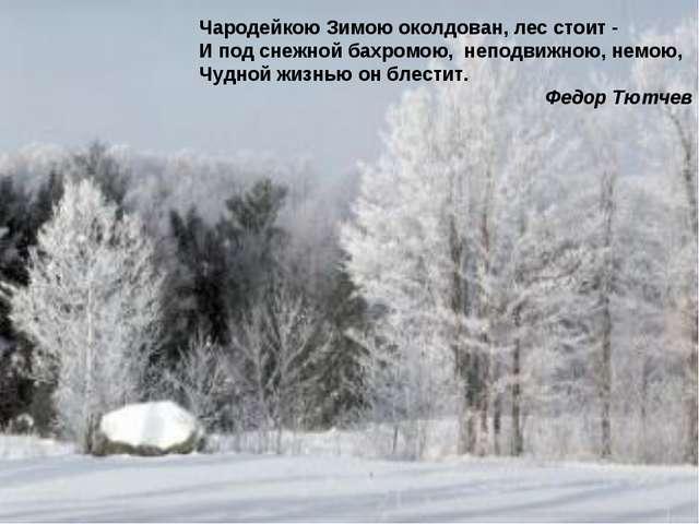 Чародейкою Зимою околдован, лес стоит - И под снежной бахромою, неподвижною,...