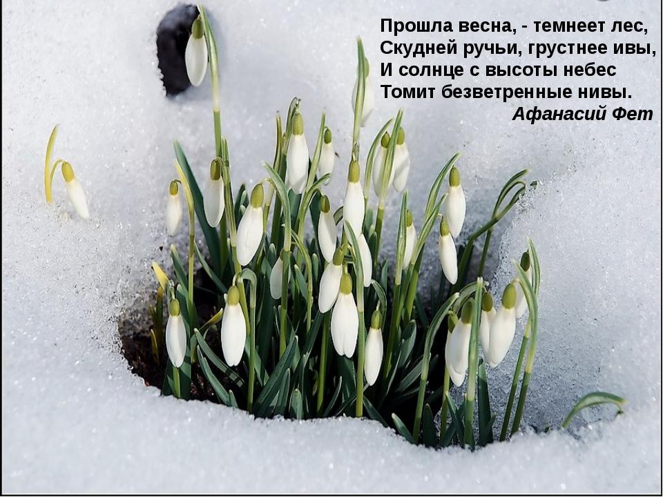 Прошла весна, - темнеет лес, Скудней ручьи, грустнее ивы, И солнце с высоты н...