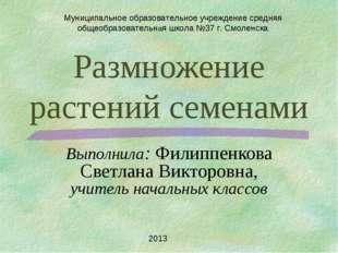 Размножение растений семенами Выполнила: Филиппенкова Светлана Викторовна, уч