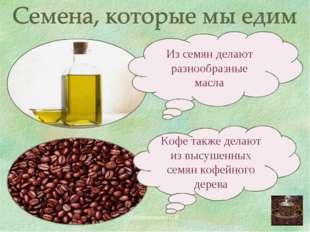 Филиппенкова С.В. Из семян делают разнообразные масла Кофе также делают из вы