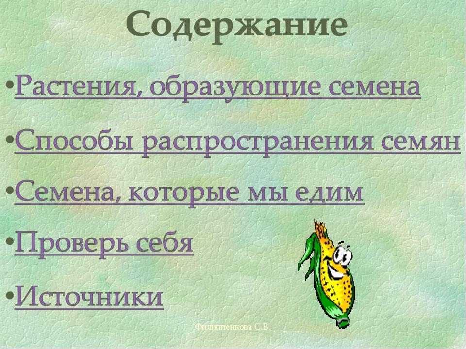 Филиппенкова С.В. Филиппенкова С.В.