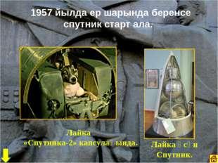 1957 йылда ер шарында беренсе спутник старт ала. Лайка «Спутника-2» капсулаһ