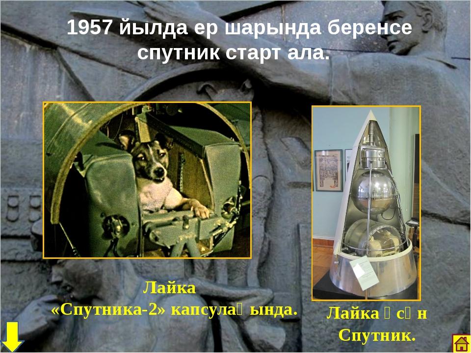 1957 йылда ер шарында беренсе спутник старт ала. Лайка «Спутника-2» капсулаһ...