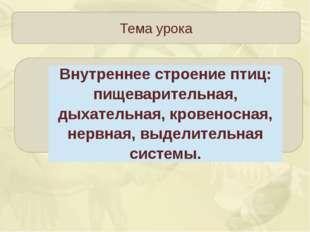 Тема урока Зорина Наталья Николаевна Внутреннее строение птиц: пищеварительн