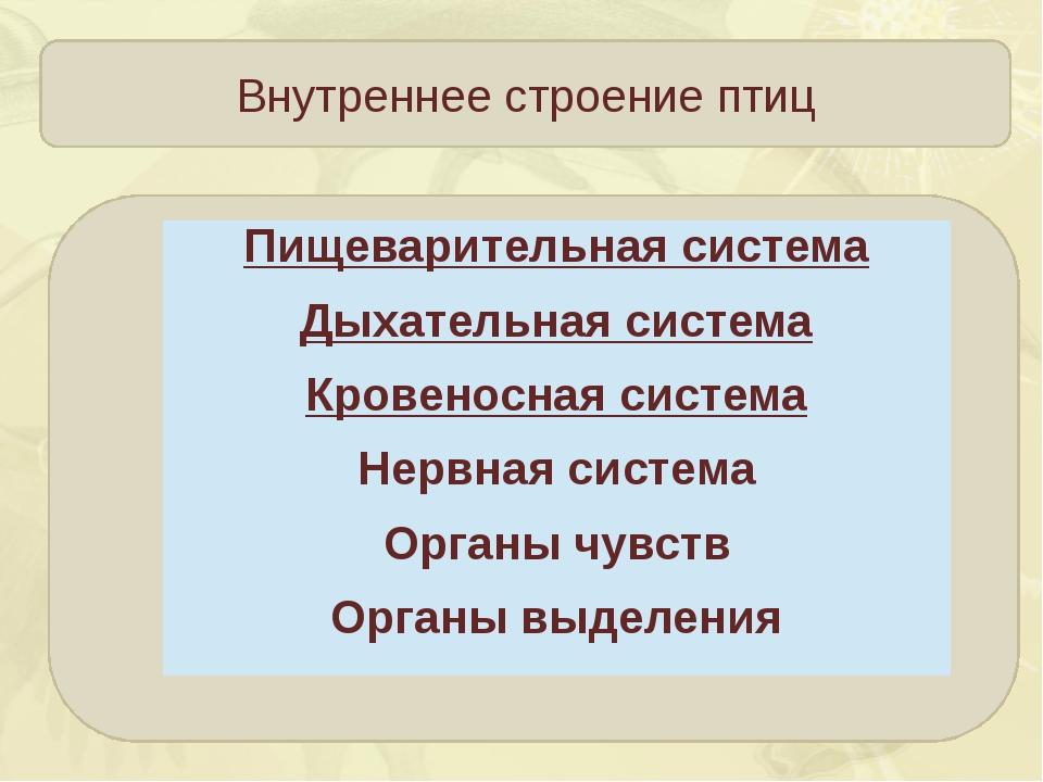 Внутреннее строение птиц Пищеварительная система Дыхательная система Кровено...