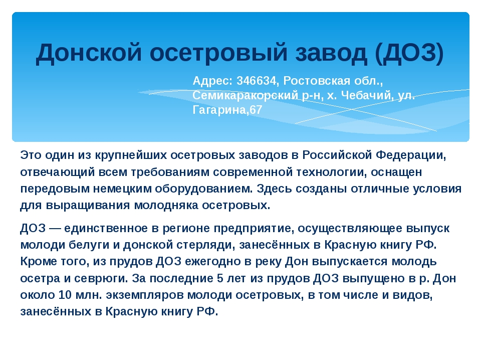 Донской осетровый завод (ДОЗ) Это один из крупнейших осетровых заводов в Росс...