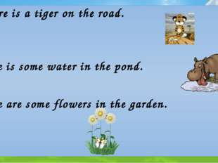 There is a tiger on the road. There is some water in the pond. There are some