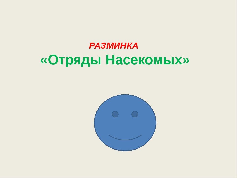 РАЗМИНКА «Отряды Насекомых»