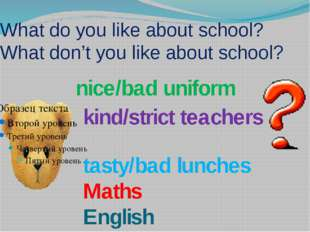 What do you like about school? What don't you like about school? nice/bad uni