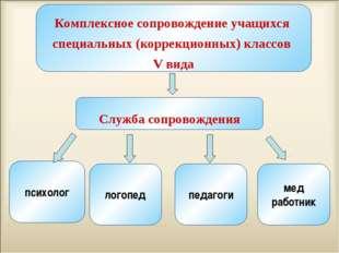 Комплексное сопровождение учащихся специальных (коррекционных) классов V вид