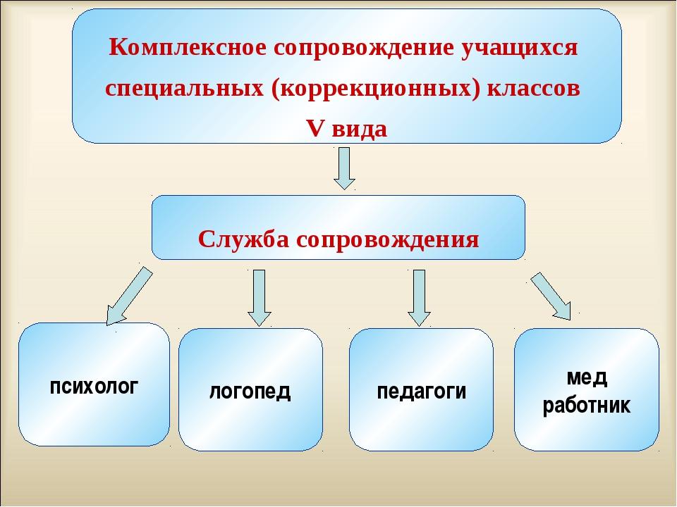 Комплексное сопровождение учащихся специальных (коррекционных) классов V вид...