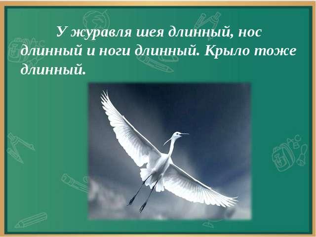 У журавля шея длинный, нос длинный и ноги длинный. Крыло тоже длинный.