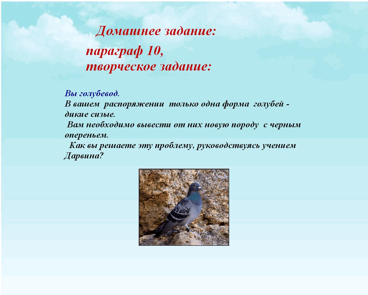 hello_html_m43b90195.png