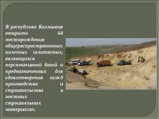 В республике Калмыкия открыто 64 месторождения общераспространенных полезных