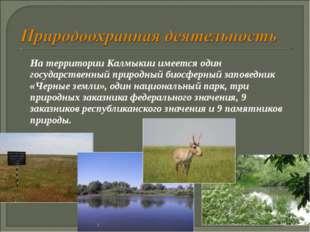 На территории Калмыкии имеется один государственный природный биосферный зап