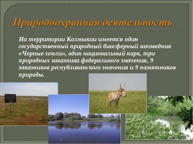 На территории Калмыкии имеется один государственный природный биосферный зап...