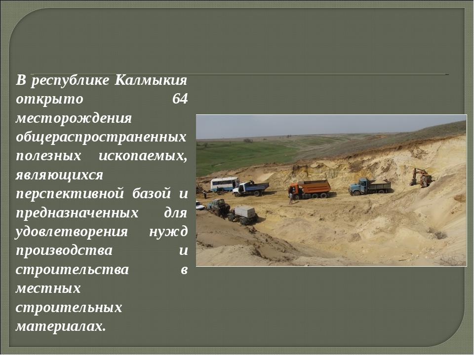 В республике Калмыкия открыто 64 месторождения общераспространенных полезных...