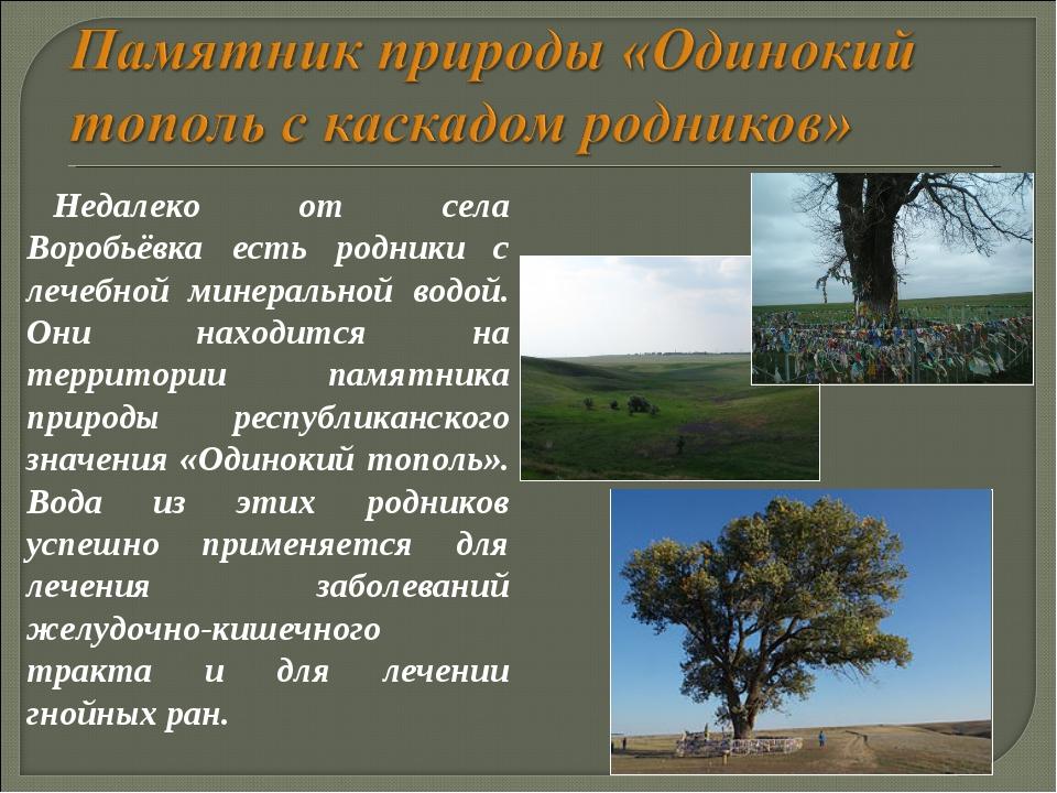 Недалеко от села Воробьёвка есть родники с лечебной минеральной водой. Они на...