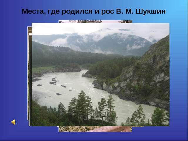Места, где родился и рос В. М. Шукшин