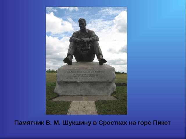 Памятник В. М. Шукшину в Сростках на горе Пикет