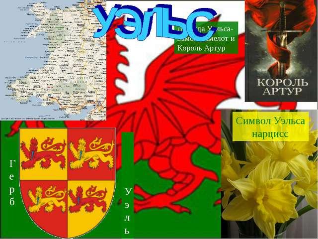 Легенда Уэльса- Замок Камелот и Король Артур Уэльса Герб Символ Уэльса нарцисс