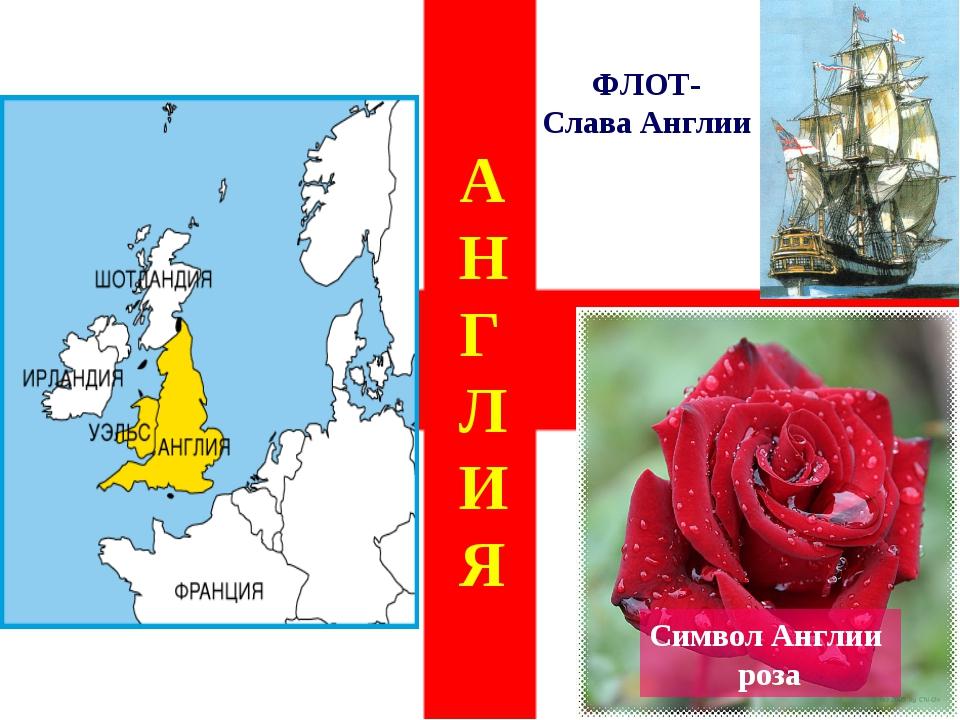 АНГЛИЯ ФЛОТ- Слава Англии Символ Англии роза