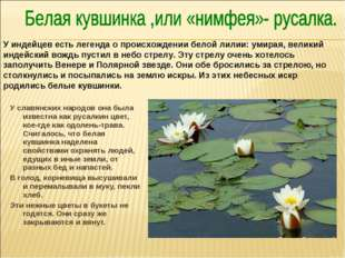 У славянских народов она была известна как русалкин цвет, кое-где как одолень