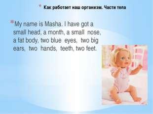Как работает наш организм. Части тела My name is Masha. I have got a small he