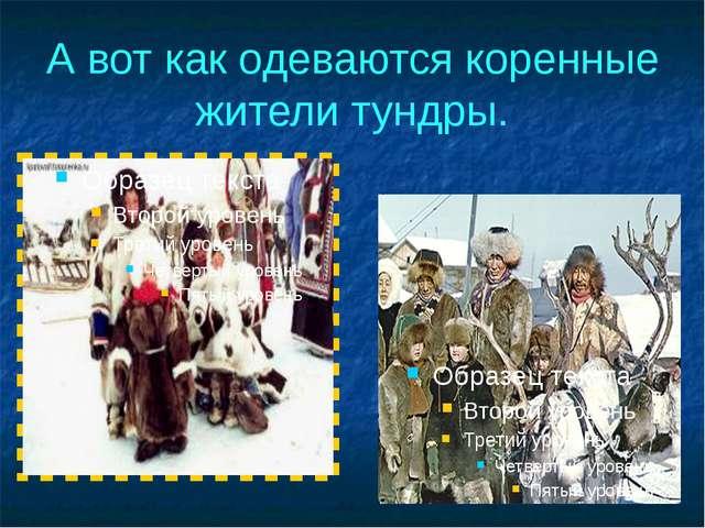 А вот как одеваются коренные жители тундры.