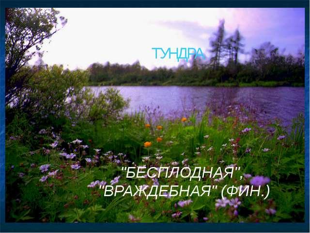 """ТУНДРА """"БЕСПЛОДНАЯ"""", """"ВРАЖДЕБНАЯ"""" (ФИН.)"""