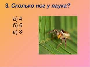 3. Сколько ног у паука?   а) 4