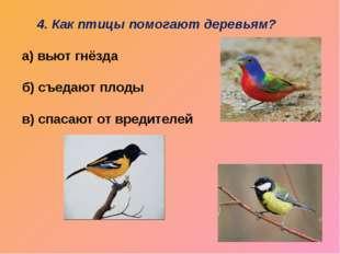 4. Как птицы помогают деревьям? а) вьют гнёзда б) съедают плоды в) спасают