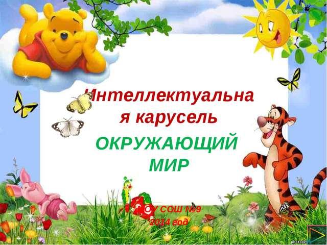 Интеллектуальная карусель ОКРУЖАЮЩИЙ МИР МОУ СОШ №9 2014 год